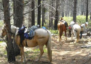 West Valley OET Members working on the Metolius-Windigo Trail